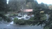 Baiersbronn › North-East: Wanderhütte Sattelei - Actual
