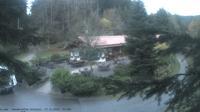 Baiersbronn › North-East: Wanderhütte Sattelei - Dia