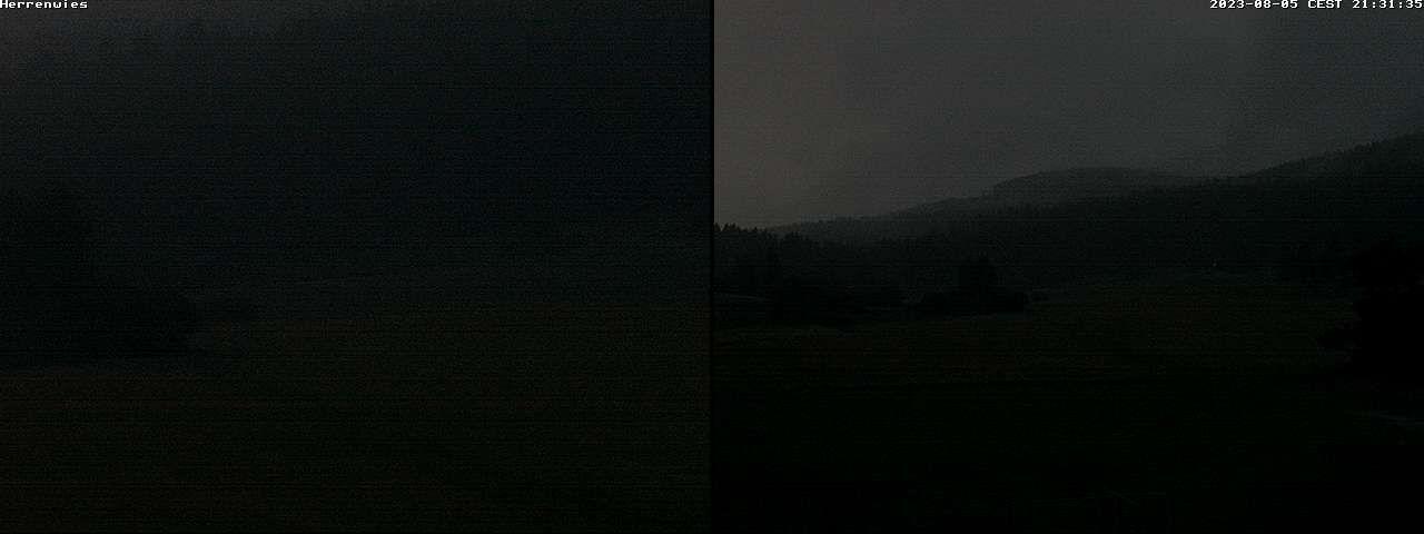 Webcam Herrenwies Schwarzwald