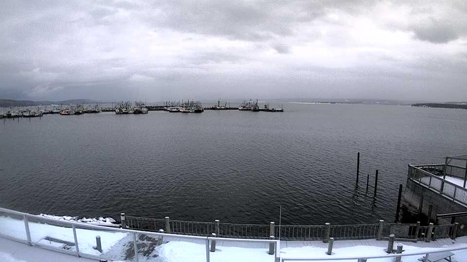 Webcam Digby: Harbour