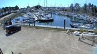 Havant: Emsworth Yacht Harbour - Day time