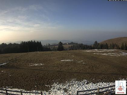 Küssnacht › Nord-West: Cham - Sempachersee