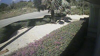 Vue webcam de jour à partir de Driftwood Village: Cayman Chillin Cam 3, Grand Cayman
