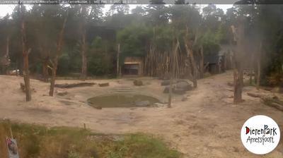 Amersfoort: Dierenpark