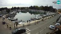 Novigrad: Mandrac - Actuelle