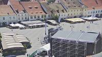 Lovnic: Ocna Sibiului - Sibiu - Overdag