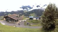 Hirschegg: Kleinwalsertal: Wanderregion Heuberg Sonna Alp - Actuelle