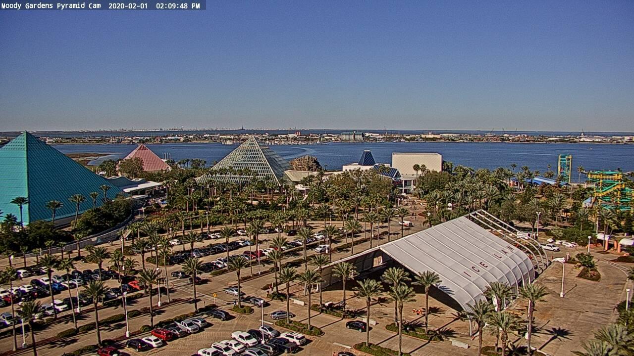 Webcam Galveston: Pyramid − Moody Gardens