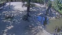 City Park: Budapest Zoo - D�l-Amerika - Day time