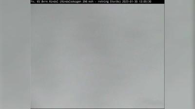 Daylight webcam view from Bakken: F65 Øvre Rindal (Rindalsskogen)