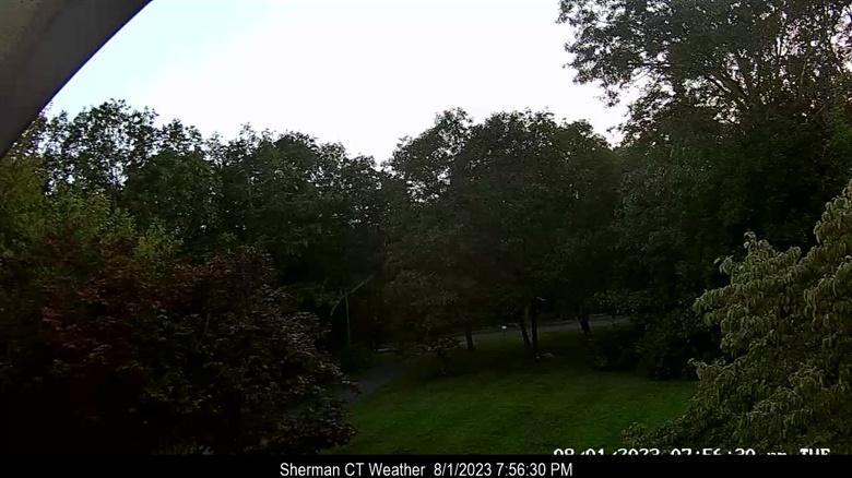 Webcam Sherman: United States: Partridge Trail