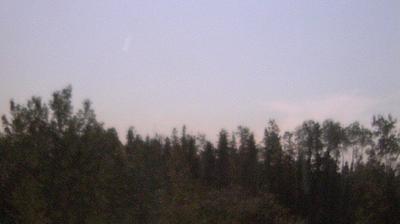 Vista de cámara web de luz diurna desde Watson Lake: Gold Mine Cam