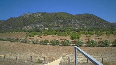 Mallorca Daglicht Webcam Image