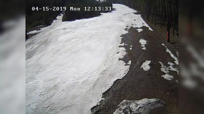 Webkamera Olkha: горнолыжный спуск