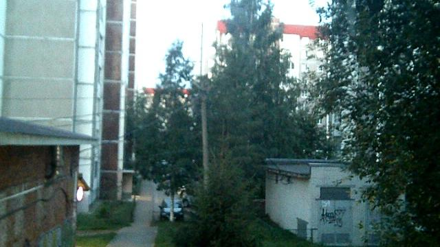 Webcam Vsevolozhsk: вид на улицу Василеозёрскую