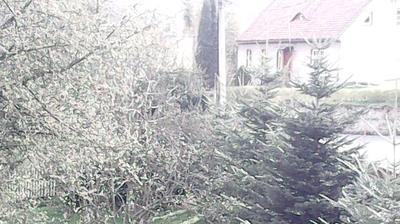Vista de cámara web de luz diurna desde Siedlecin: ul Długa