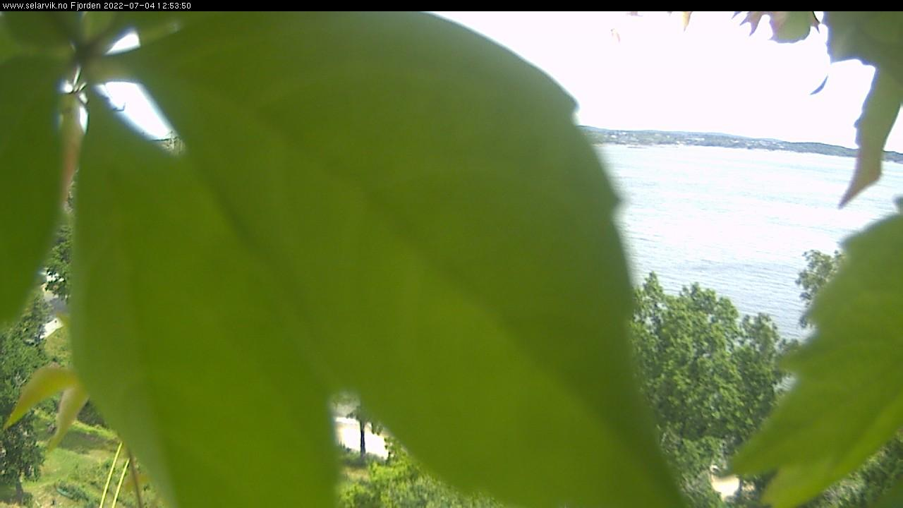 Webkamera Fredenshavn bru: Larviksfjorden