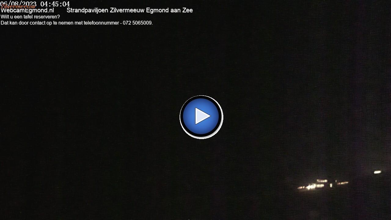 Webkamera Egmond aan Zee › North-West: Zilvermeeuw