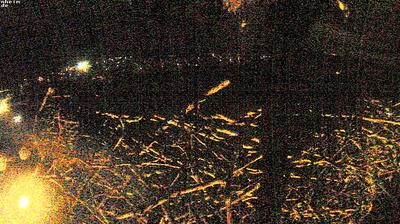 Thumbnail of Gottenheim webcam at 1:08, Jan 22