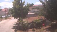 Guarda: Meu jardim - Dia