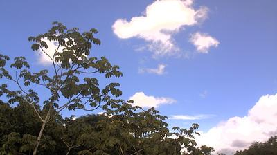 Daylight webcam view from Costa Rica › South: Karen Mogensen Nature Reserve