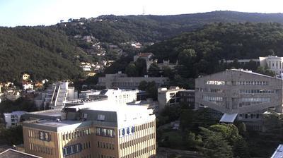 Trieste: Università degli Studi di Trieste