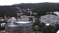 Triest: Università degli Studi di Trieste - Aktuell