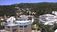 Triest: Università degli Studi di Trieste - Dagtid