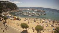 Sant Antoni › South-West: Port De Llafranc - Jour