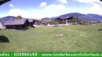 Flachau: Bio Bauernhof Ederbauer - Dia