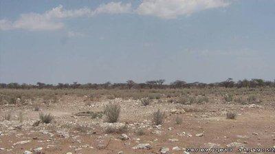 webcam namibia wasserloch