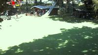 Gordola: Parco Avventura - Adventure Park - Seilpark - Dagtid