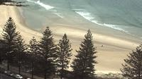Tweed: Rainbow Bay - Actuales