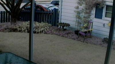 Webcam Yorkfield: Elmhurst, IL