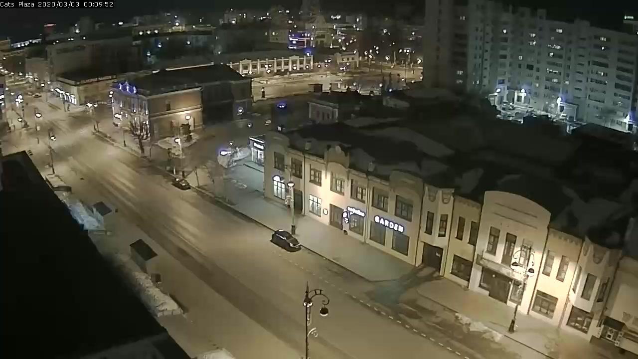 Webkamera Tyumen: Сквер сибирских кошек