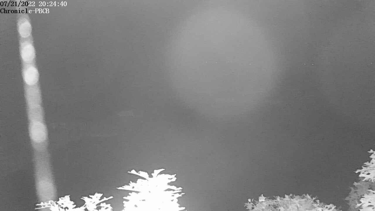 Webcam Orleans › East: Pleasant Bay Community Boating − P