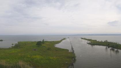 Thal SG: Hafen am Rheinspitz