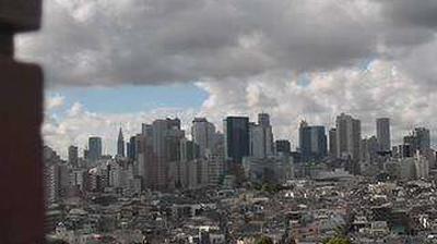 Webcam かみたかだ: Shinjuku