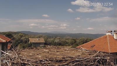 Daylight webcam view from Govedartsi: Albania