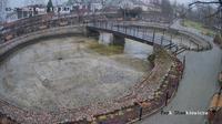 Kowal: Rzeczpospolita - El día