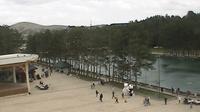 Zlatibor: mountain webcam (since ) - Jour