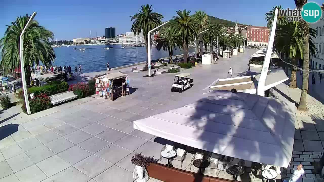 Webcam Split: Riva of Croatian Revival