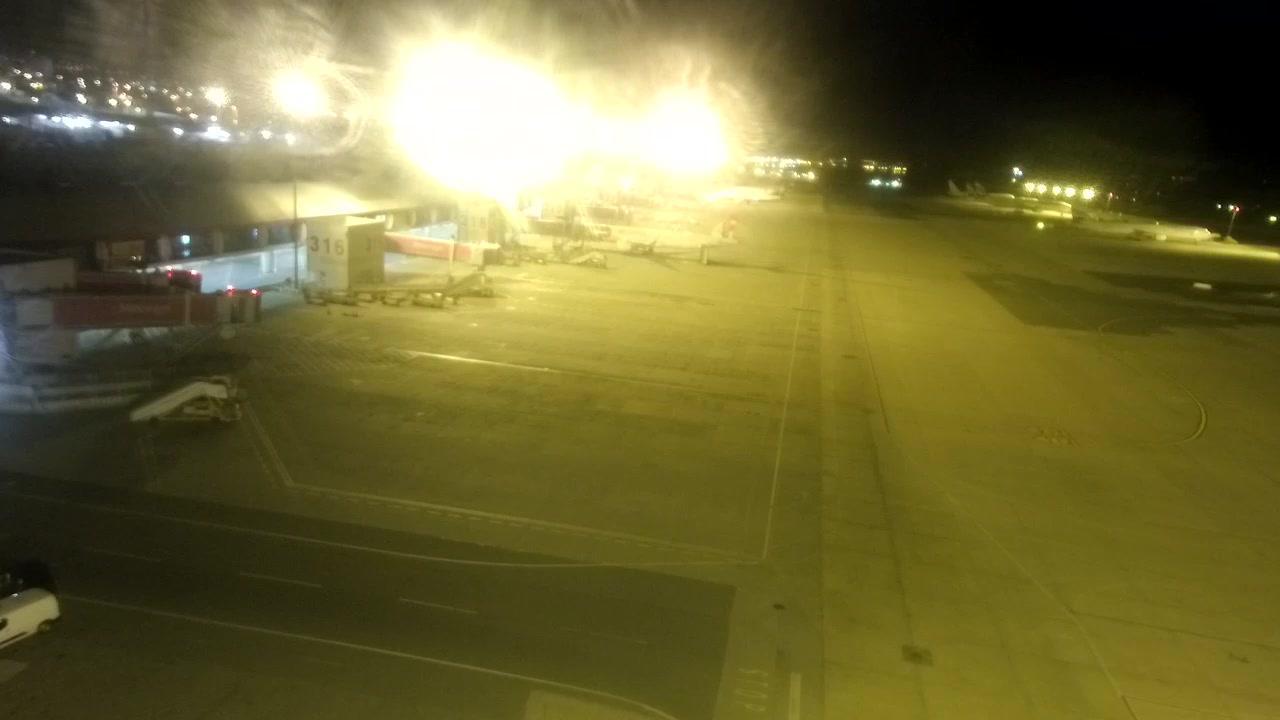 Webcam Faro