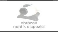 Zatec: Město Žatec - Náměstí Svobody - Day time