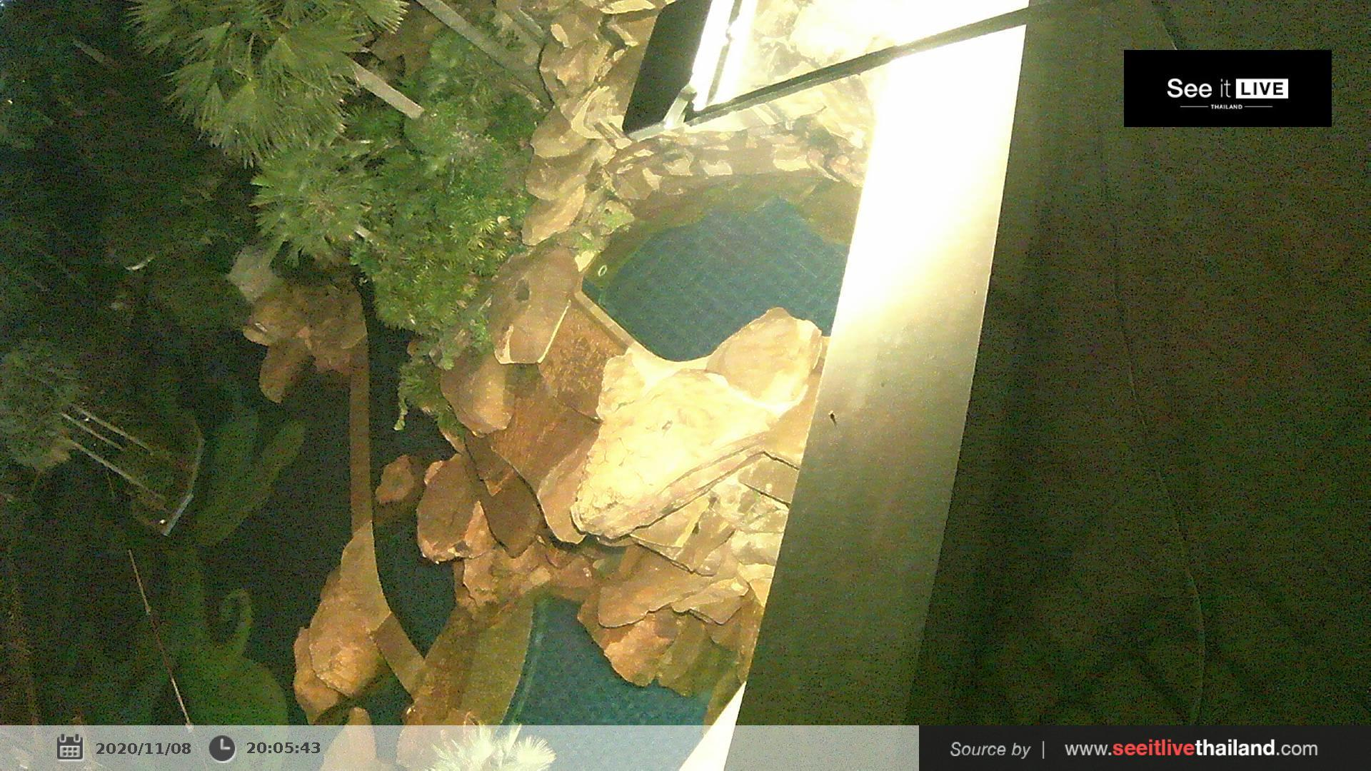 Webcam บ้านหนองสมอ: The Zign − Pattaya Naklua