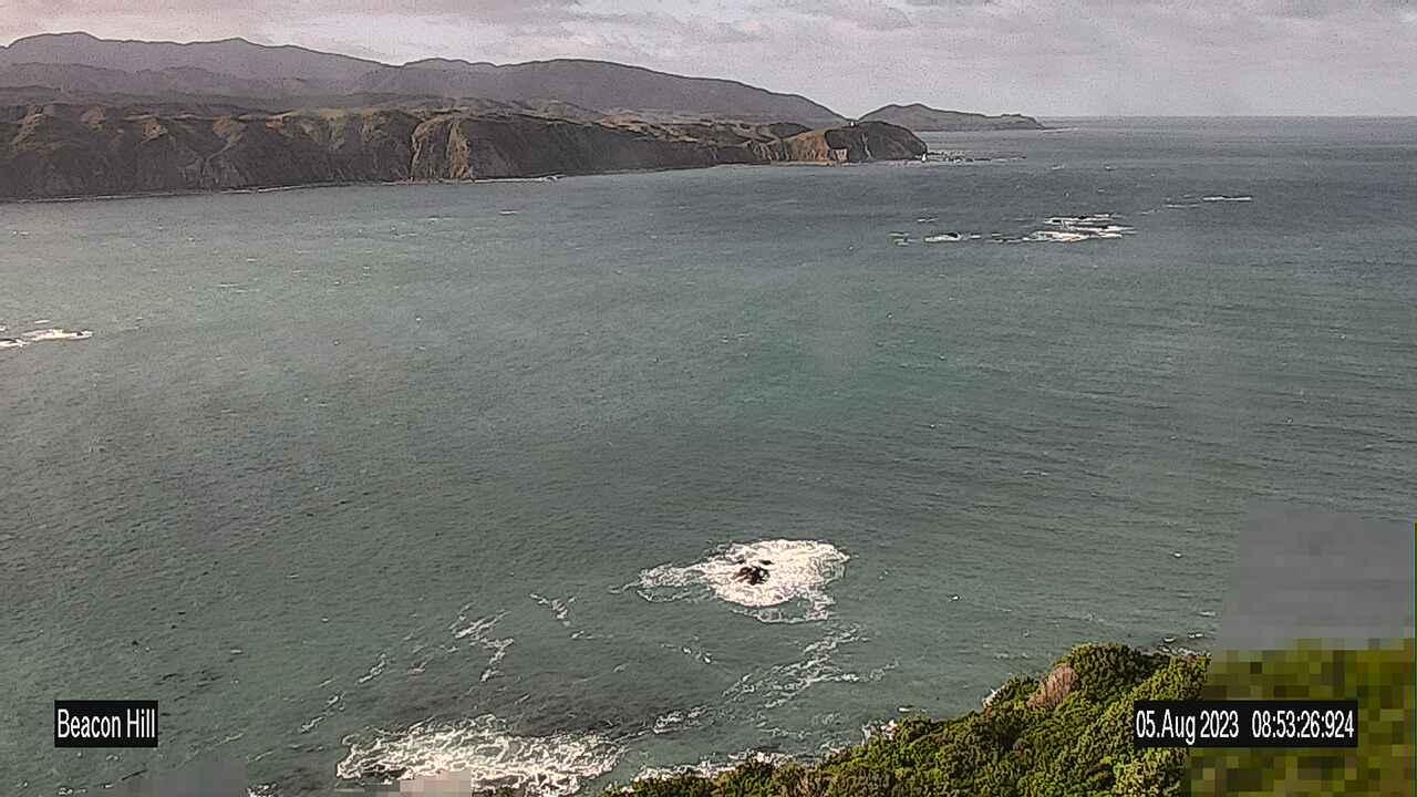 Webkamera Wellington: Beacon Hill − Breaker Bay