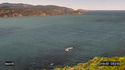 Daylight webcam view from Wellington: Beacon Hill − Breaker Bay