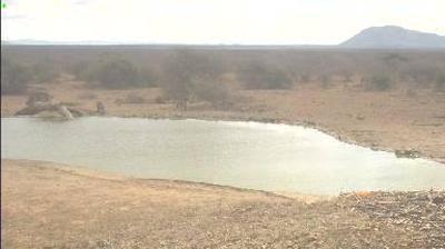 Vue webcam de jour à partir de Madikwe