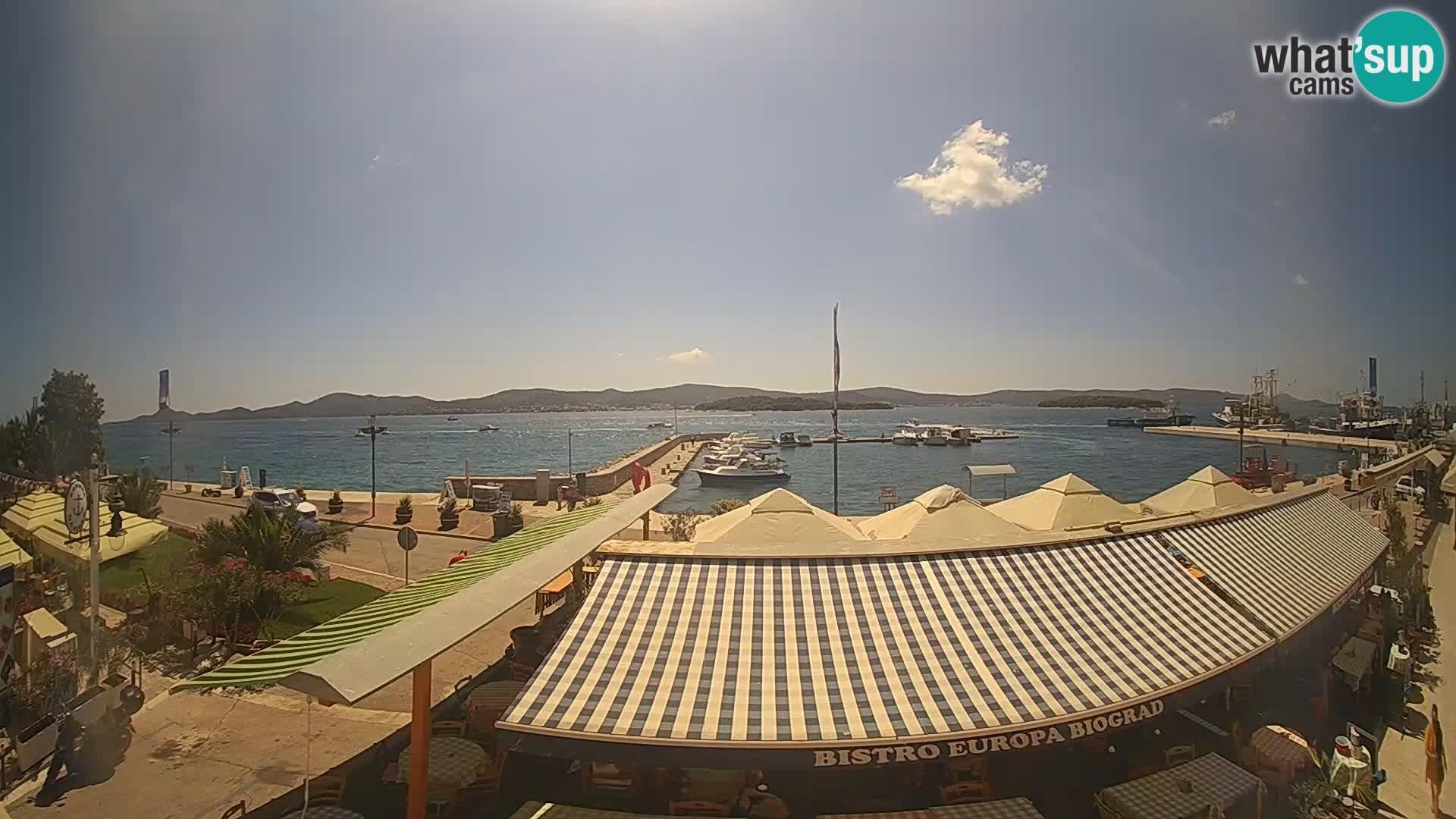 Webcam Biograd na Moru: marina