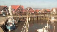 Neuharlingersiel: Livespotting - Hafen Ost - Dia